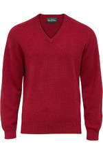 Alan Paine Mens Burford Lambswool V-Neck Jumper Magma